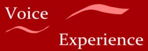 logo-voice-expierience